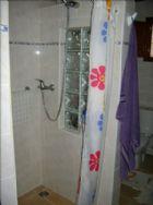 shower, main bathroom