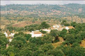 property in Pero Ponto