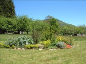 View of garden and meadow with fruit trees