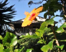 property in Tutukaka Coast