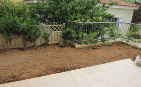 Rear garden cleared and leveled for planting
