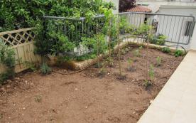 Vegetable garden freshly planted