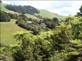 property in Whangarei