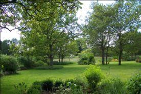 view down garden