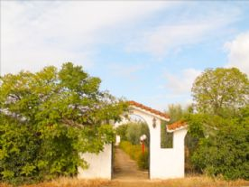 property in Nea Moudania