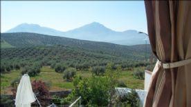 property in Bobadilla