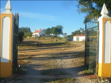 property in Cruz De Joao Mendes