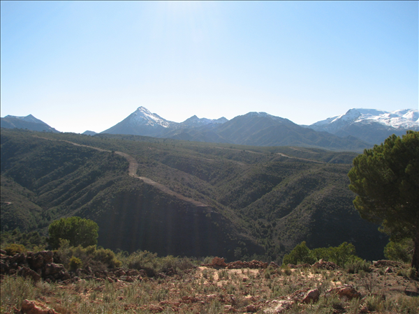 Yoga Retreat For Sale Italy Andalusia Magnoliaproperty