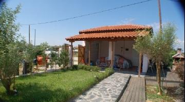 property in Rizia