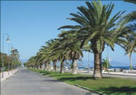 The Sea Front (Bianco)