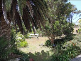 Quiet area in garden