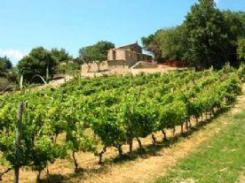 property in Sassofortino