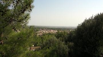 property in Souni