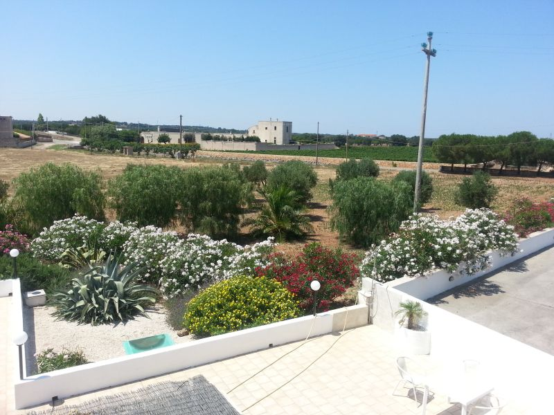 From the roof towards the Masseria