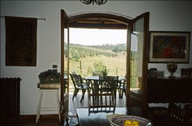 View of kitchen patio
