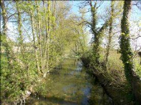 River Osme