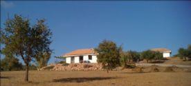 property in Kalo Nero