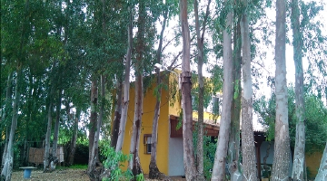 property in Canos De Meca