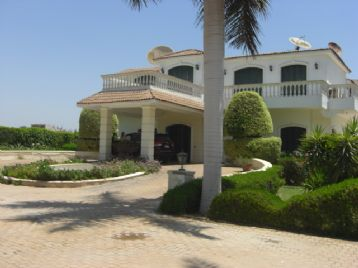 property in MANSOUREYA