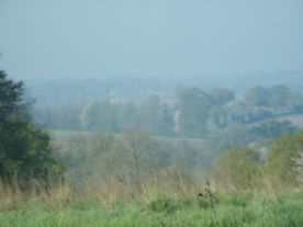 View from 'up the lane' in hazy summer morning