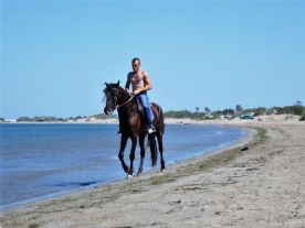 Scenes on the beach at Riumar with horse & rider