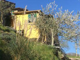 property in Ponzanello