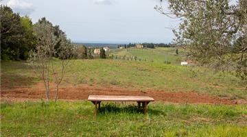 property in Riparbella