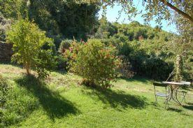 cottage side garden