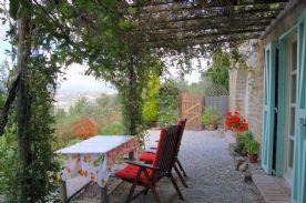 under the vine covered pergola