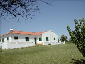 property in Ferreira do Alentejo