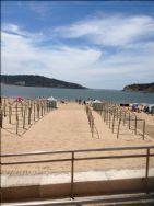 Beach San Martinho do Porto