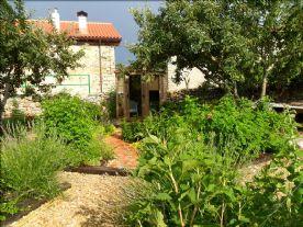 Gazebo in vegetable area