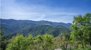 property in Genalguacil