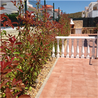 property in Ayamonte