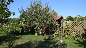 property in Debrecen-Józsa