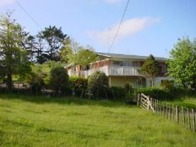 property in Wellsford